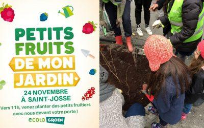 Plantation de petits fruitiers à St-Josse
